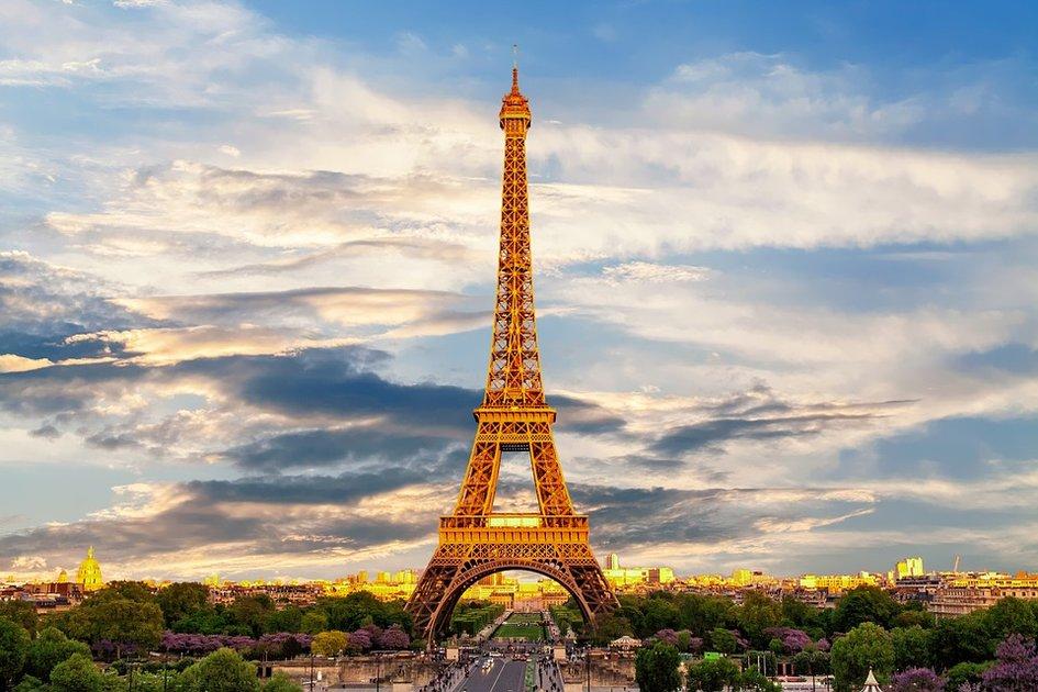 17 good reasons to learn French - La France en Nouvelle Zélande